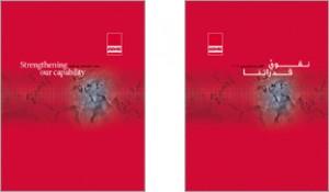 2006 BMMI Annual Report