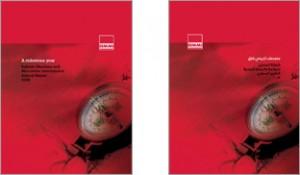 2008 BMMI Annual Report